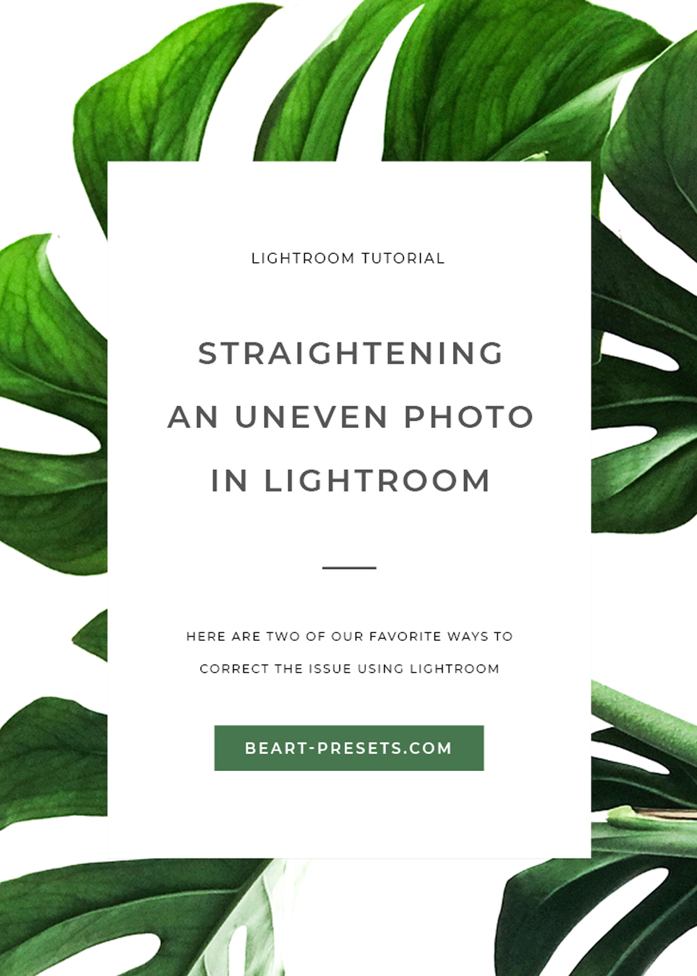 STRAIGHTENING AN UNEVEN PHOTO IN LIGHTROOM