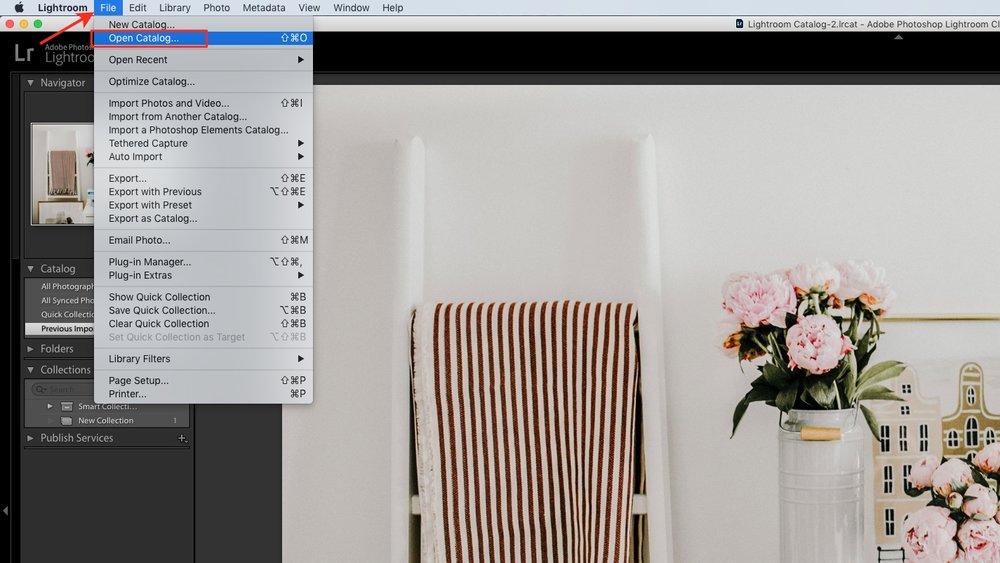 open catalog in lightroom