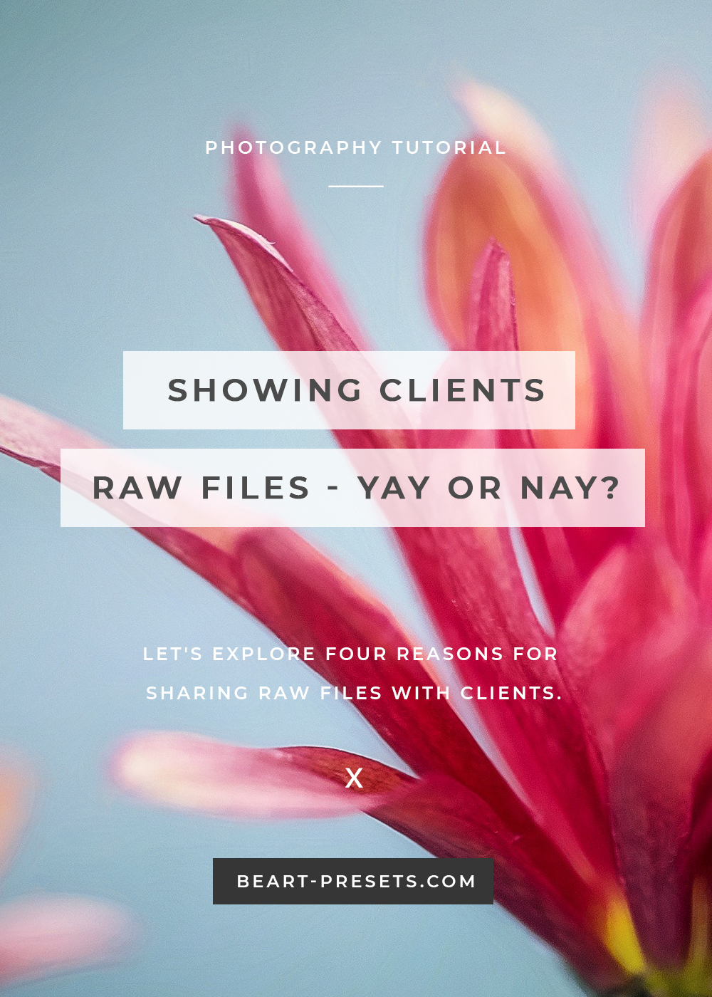 sharing raw files with clients
