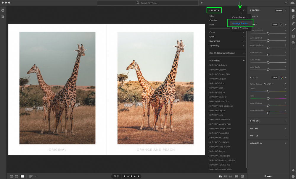 manage presets in lightroom cc