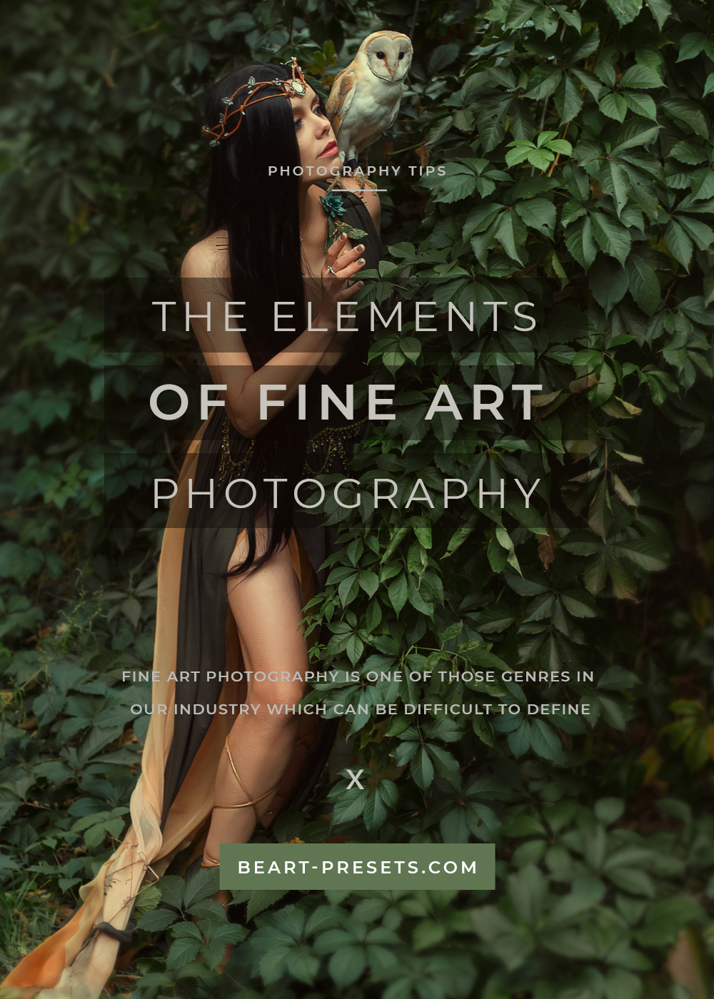 The Elements Of Fine Art Photography