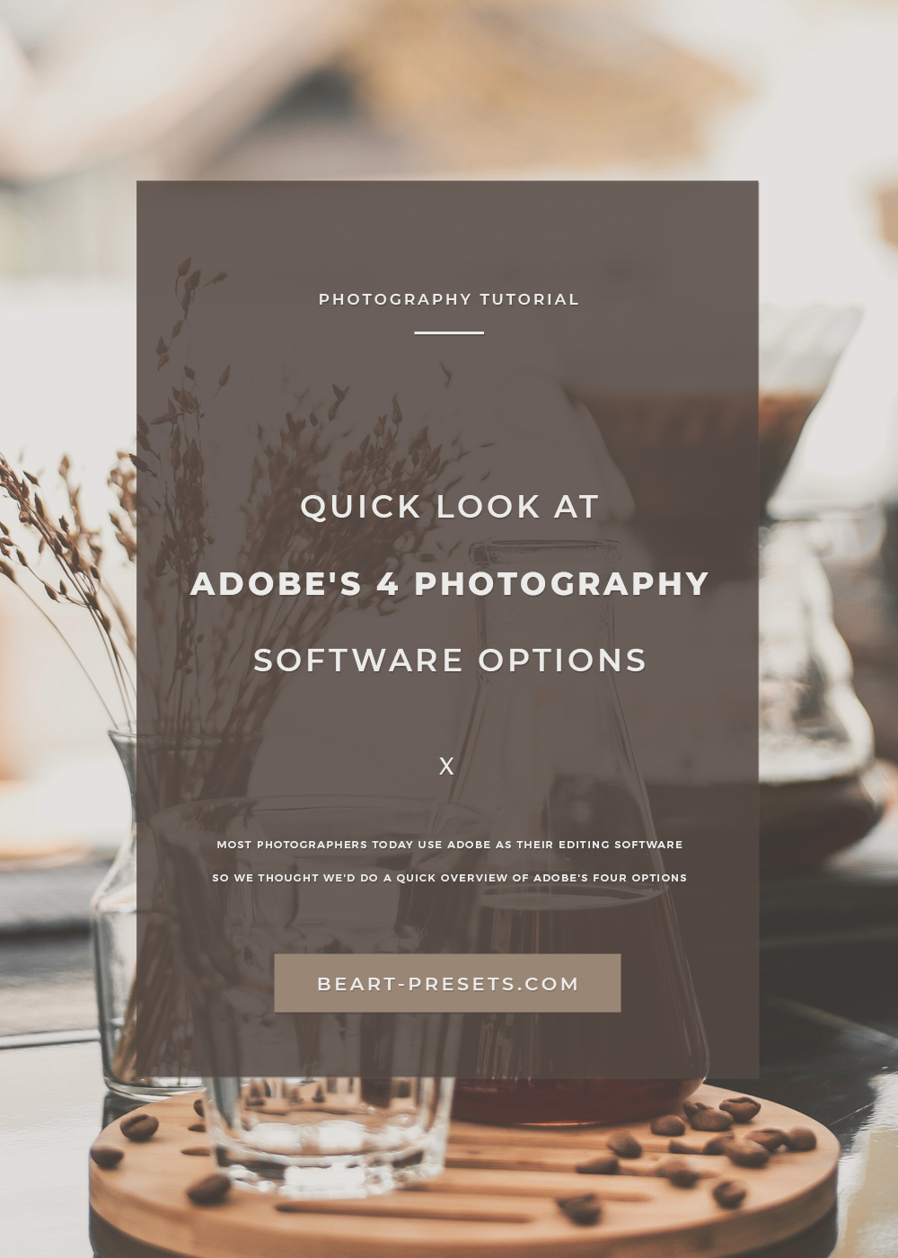 ADOBE'S 4 PHOTOGRAPHY SOFTWARE OPTIONS