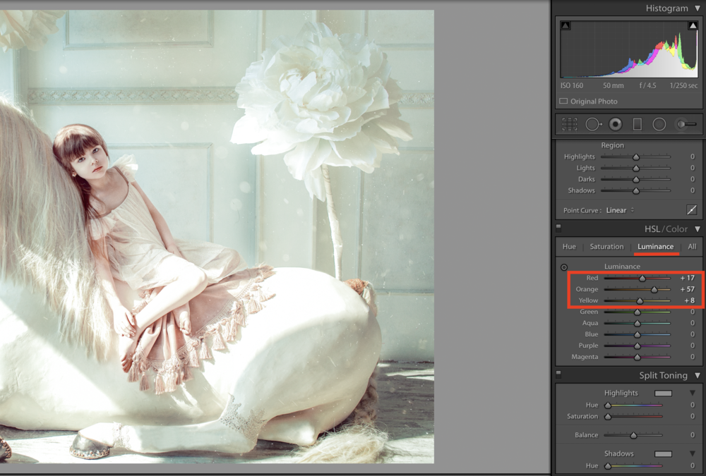 luminance option in lightroom