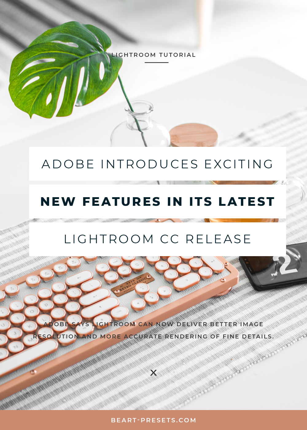 NEW FEATURE LIGHTROOM