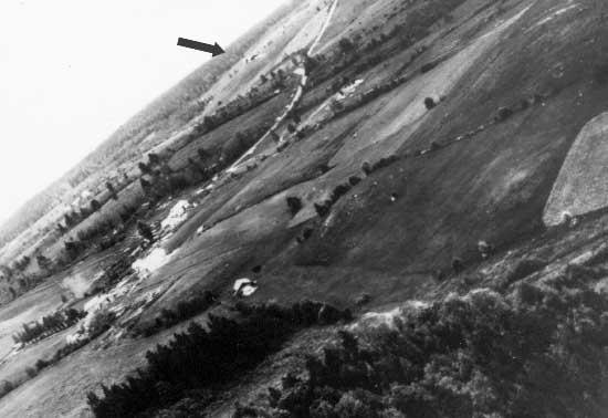 An in-flight picture taken during a Shturmovik attack on German vehicles- the arrow indicates an attacking Il-2 ahead of the camera aircraft.