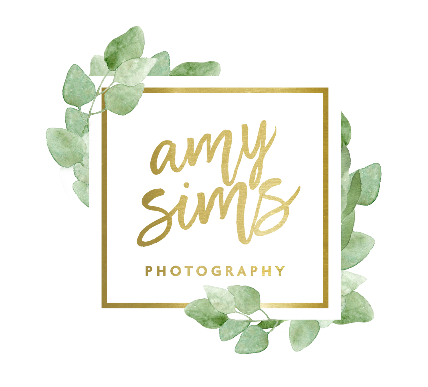 Amy Sims Photography | New York Wedding Photographer