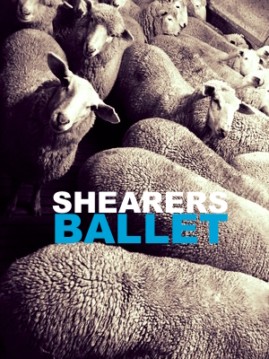 SHEARERS BALLET AND SILOS PROJECT