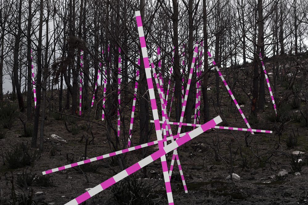 Tom Borgas,  Installation/drawing (25 poles Striped) , 2016, wood, spray paint, landscape, Monte do Crasto, Portugal, courtesy of the artist
