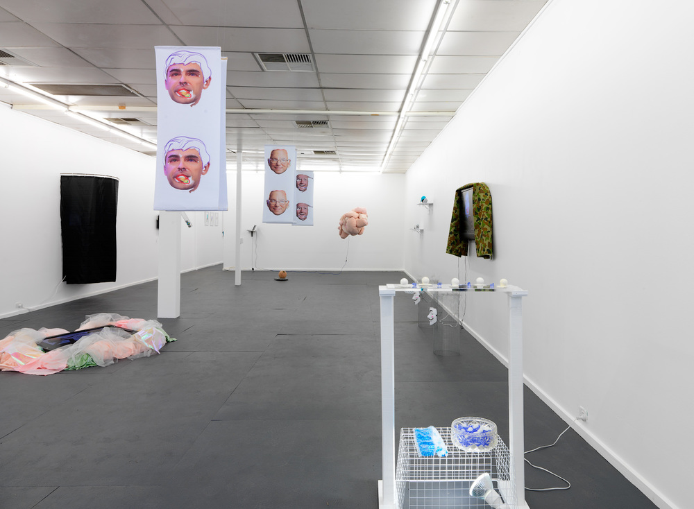 Alterior Motive , Mia van den Bos and Ashleigh D'Antonio, installation view, Fontanelle Gallery, Adelaide 2016. Photography by Grant Hancock.