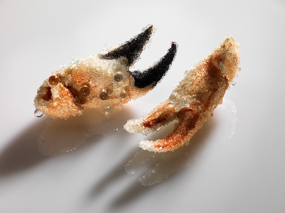 Catherine Truman,  No Surface Holds: Crab Claw Installation , 2015-17, found crab claws, glass spheres, dimensions variable. Photo by Grant Hancock.