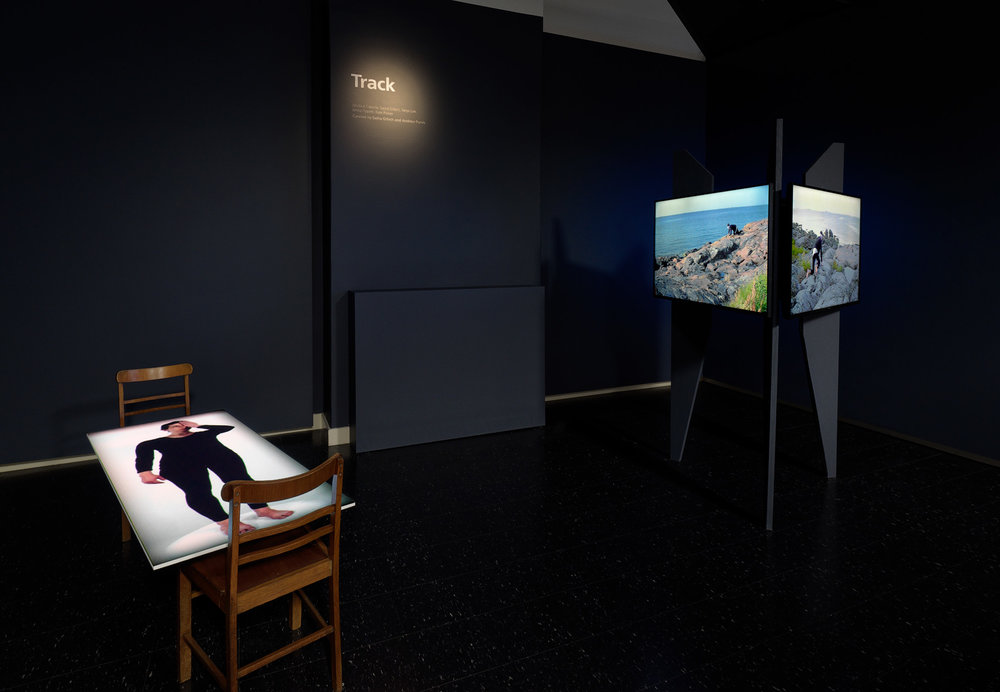 Installation view:  TRACK  featuring Jenna Pippett (left) and Jacobus Capone (right), Adelaide Central Gallery, 2017, curated by Sasha Grbich and Andrew Purvis. Photo by Grant Hancock.