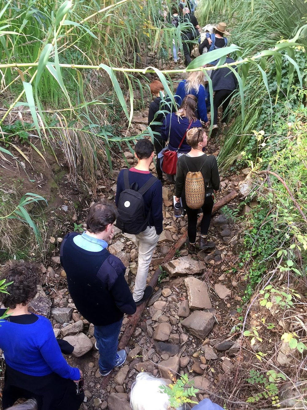Laura Wills's participants walking through the creek.