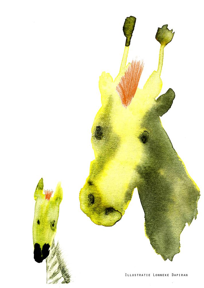 Giraffe&Zebra toupet.jpg