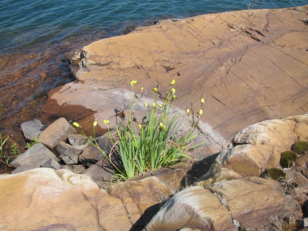 MacGregor Bay