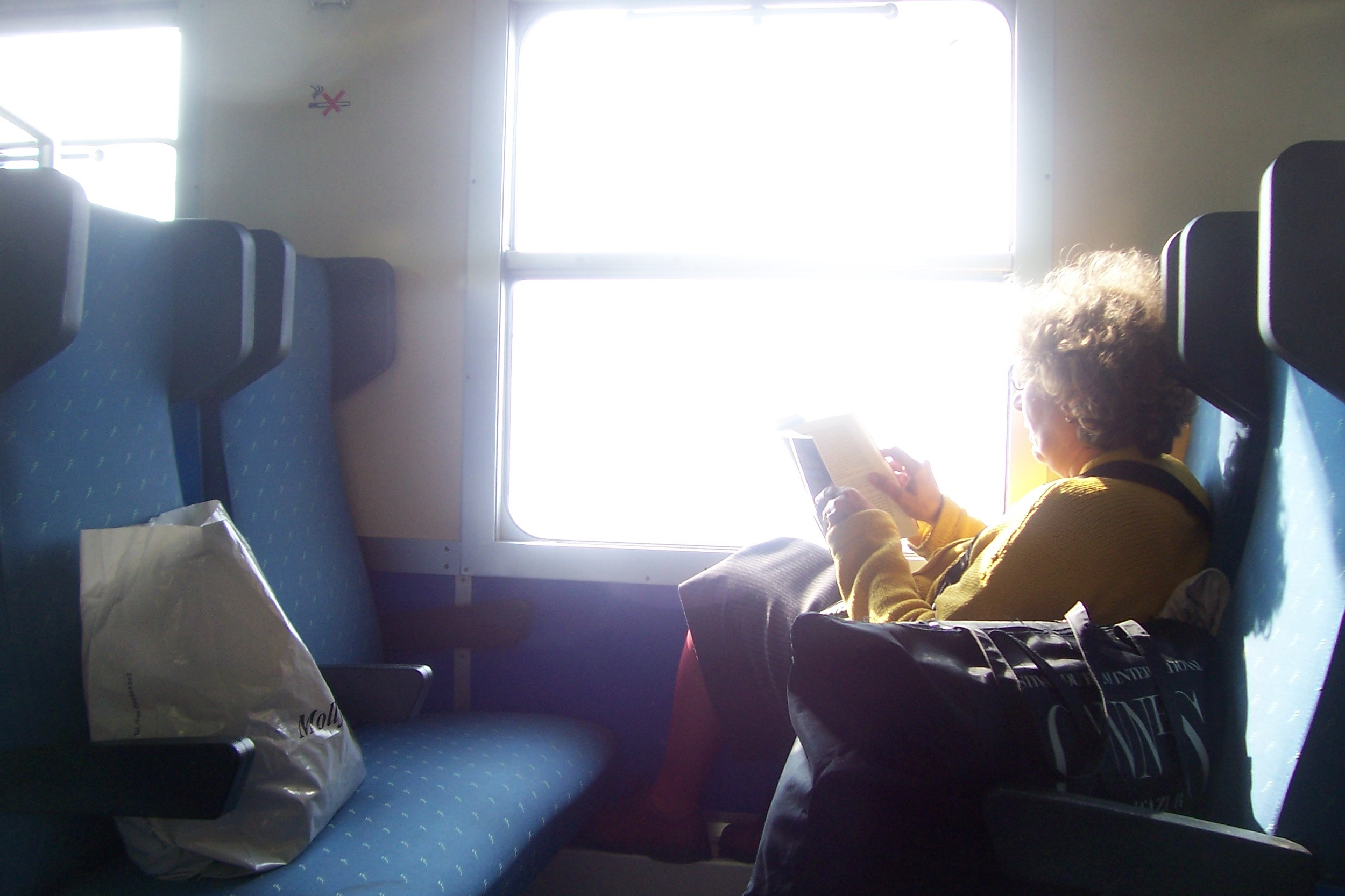 book on a train