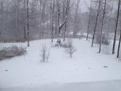 Alyson snow