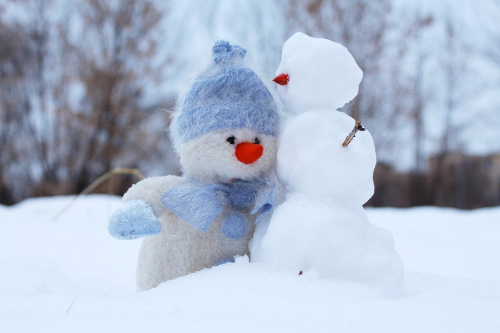Frosty and his friend