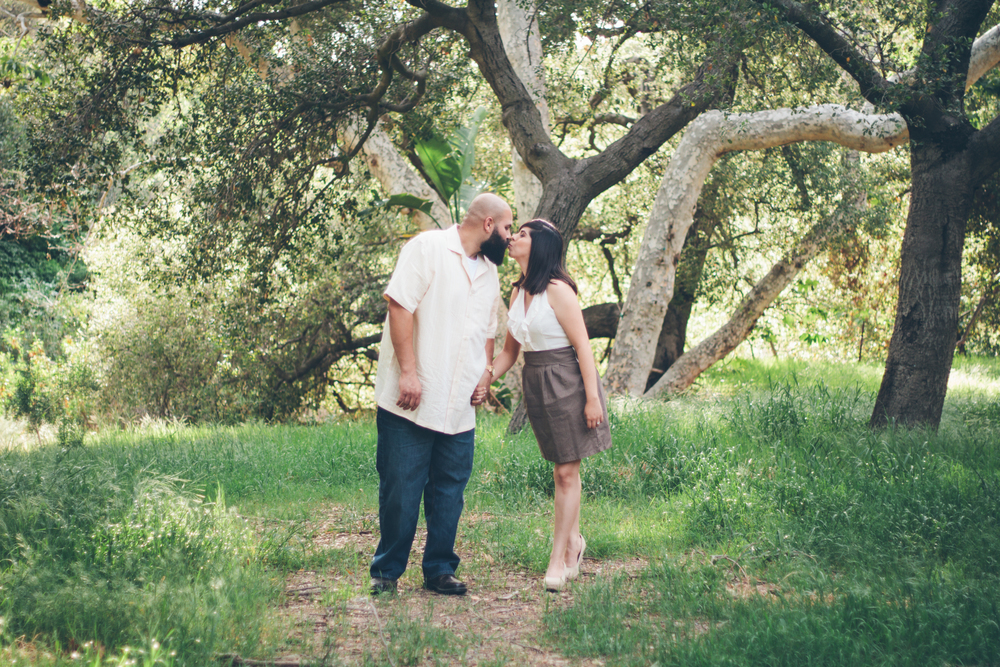 Santiago Canyon Engagement Janelisa and Sultan-13.jpg