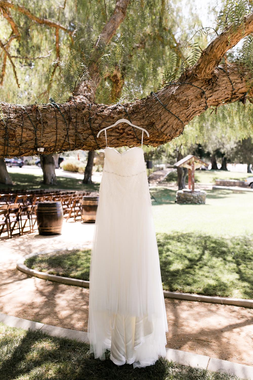 Star Wars Giracci Vineyards Silverado Wedding-27.jpg