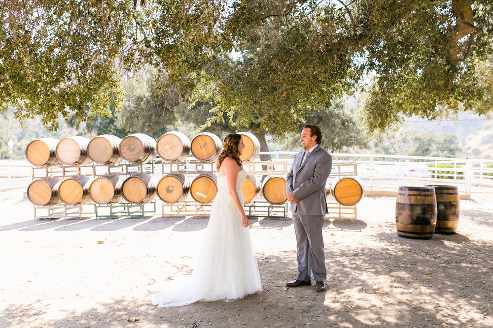 Star Wars Giracci Vineyards Silverado Wedding-33.jpg