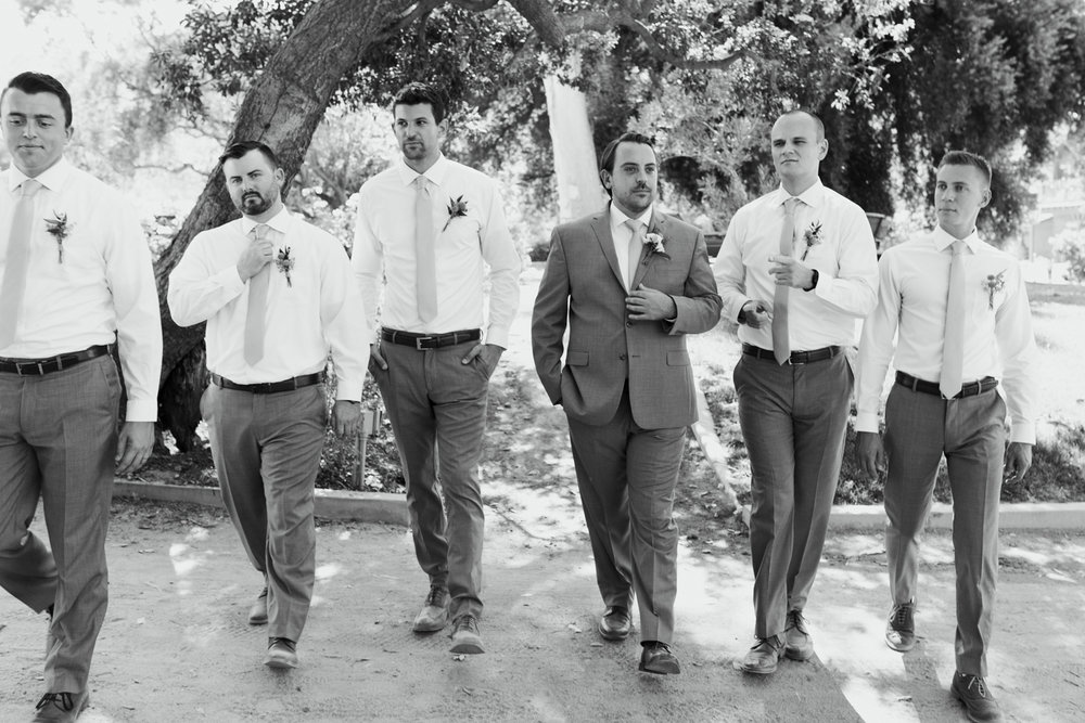 Star Wars Giracci Vineyards Silverado Wedding-41.jpg
