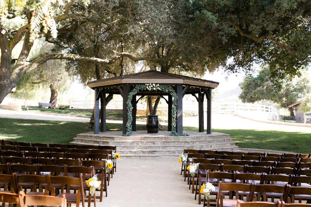 Star Wars Giracci Vineyards Silverado Wedding-44.jpg