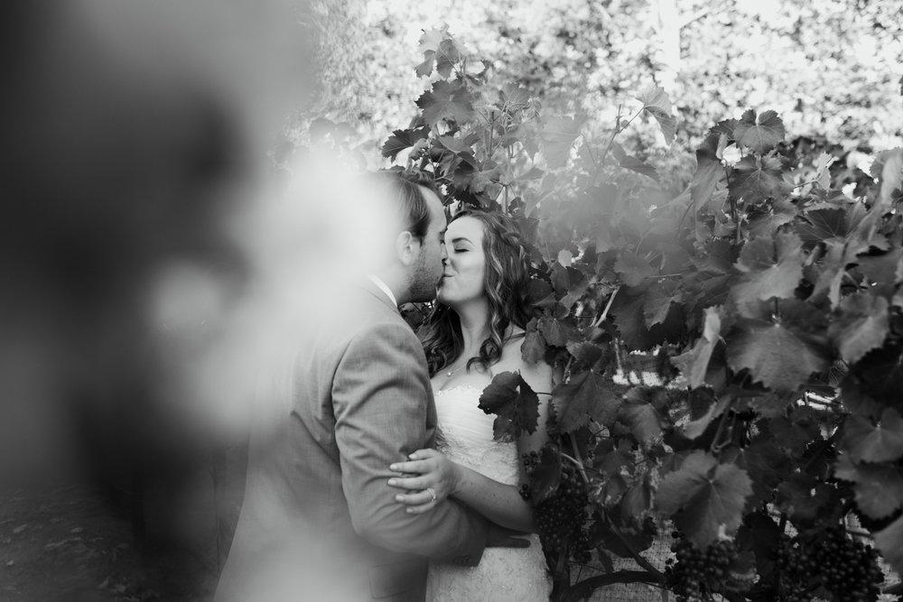 Star Wars Giracci Vineyards Silverado Wedding-65.jpg