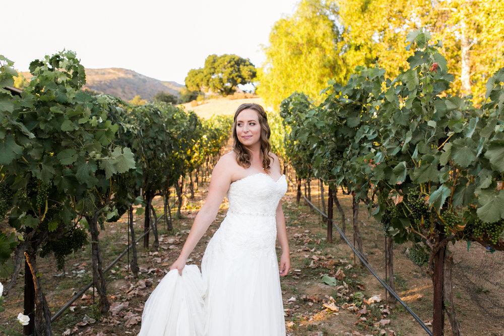 Star Wars Giracci Vineyards Silverado Wedding-67.jpg