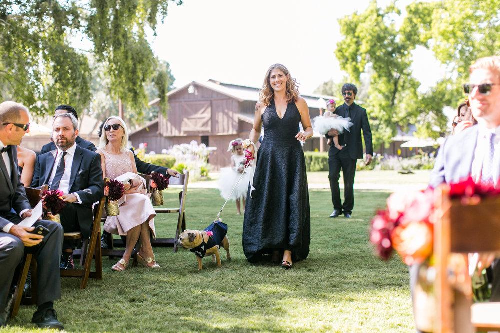 Solvang Mexican Fiesta Wedding_Ashley and Alex-30.jpg