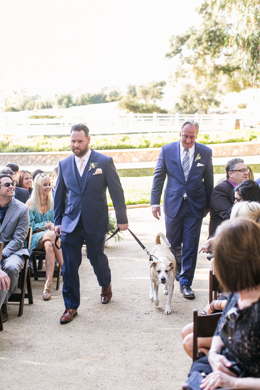 Spring Giracci Vineyard Wedding, Cassie and Tom-32.jpg