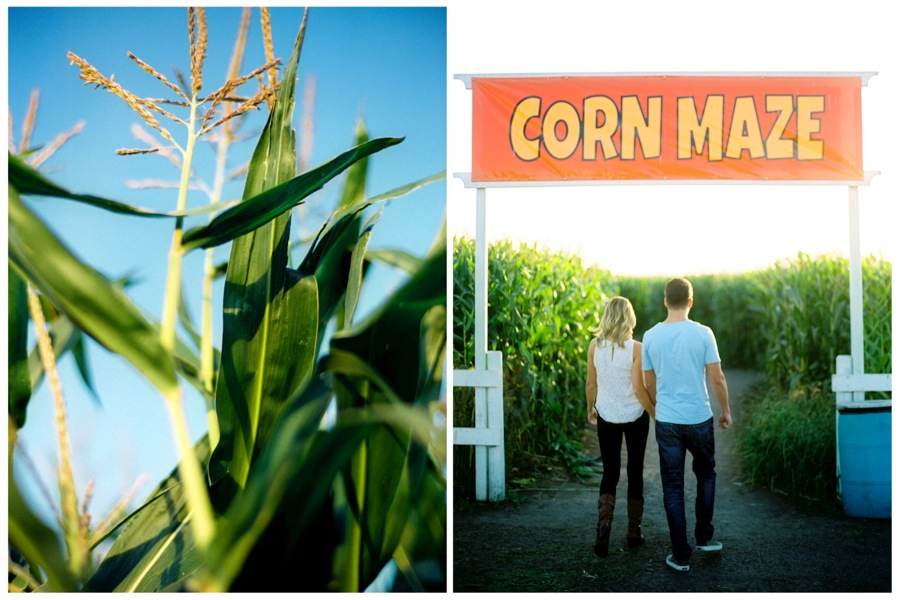 Edmonton-Corn-Maze-Engagement-Session-01