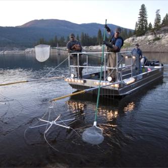 Boat Electrofishing Certification -
