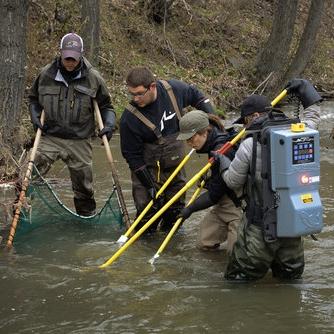Electrofishing Recertification -