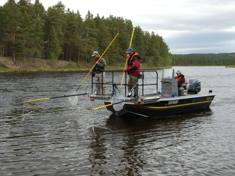 boat EF unit pic4.jpg
