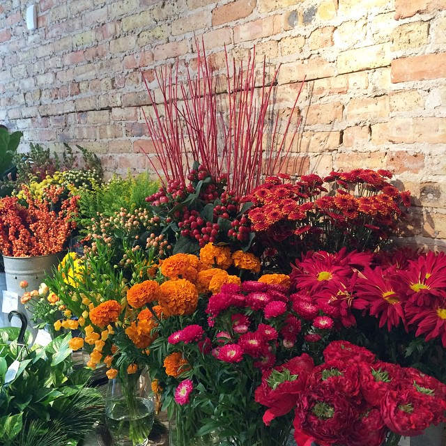 Stop on by for some flowers today! #logansquare