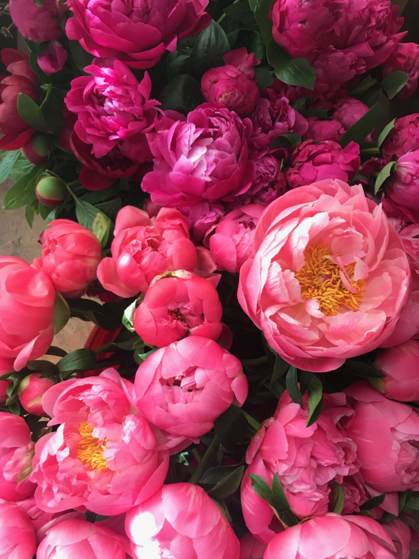 Logan-Square-Flower-Workshop-Peonies-Fleur