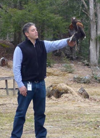 Peter with a Harris's Hawk (PARABUTEO UNICINCTUS)