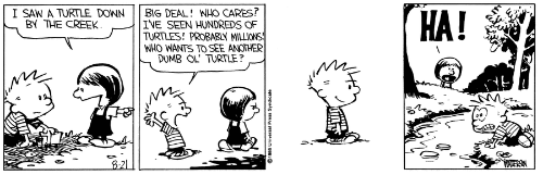 Classic Calvin and Hobbes comic strip.