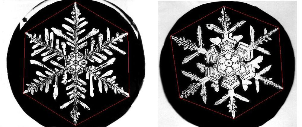 A snowflake always has six sides or arms.
