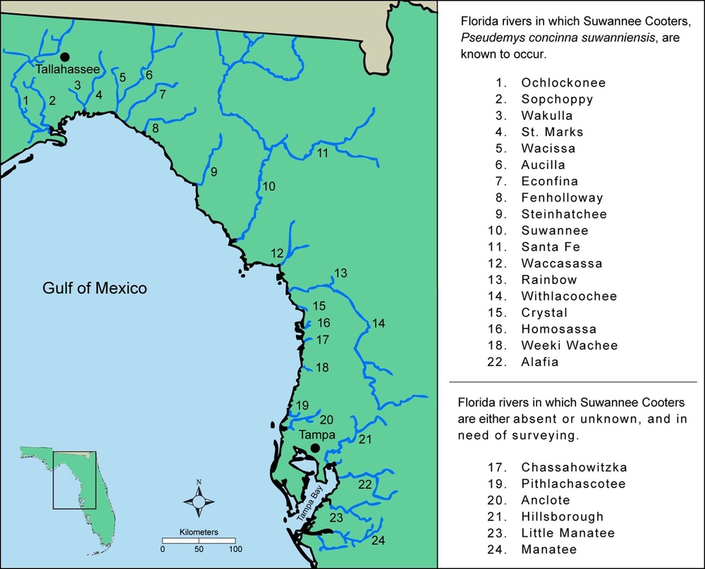 Range of the Suwannee cooter within Florida. The species is restricted to rivers.