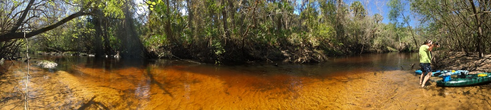 Such a beautiful blackwater river.
