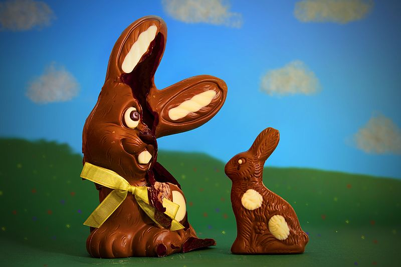 Unlike us, chocolate rabbits can only melt when heated. Photo by Pi Consti