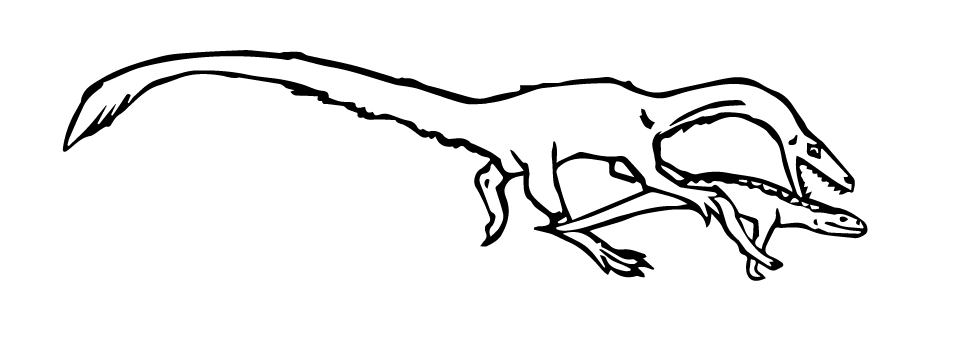 Coelophysis attacking the crocodylomorph Hesperosuchus. Illustration by Kate Dzikiewicz