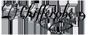 logo-chif.png