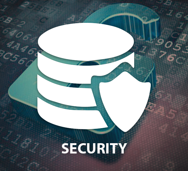 Information and Infrastructure Security