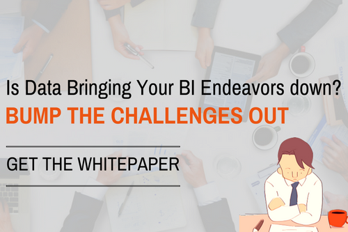 Data Challenges in BI - Whitepaper