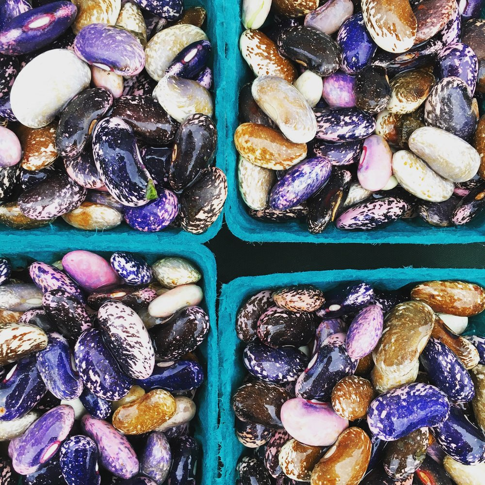 beans-farmers-market.jpg