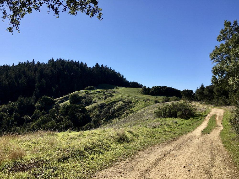 Camp Tamarancho Mountain Biking
