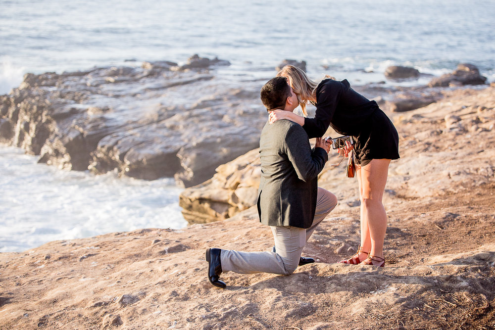 La-jolla-cove-proposal-chicago-natives-san-diego-sunset-golden-hour-love-story-engaged-alligator-head (17 of 158).jpg