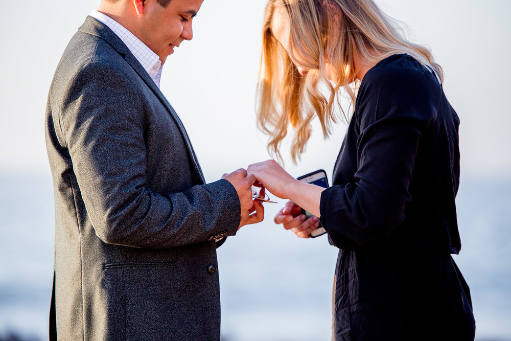 La-jolla-cove-proposal-chicago-natives-san-diego-sunset-golden-hour-love-story-engaged-alligator-head (26 of 158).jpg